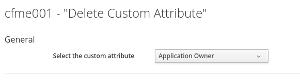 Dalete Custom Attribute